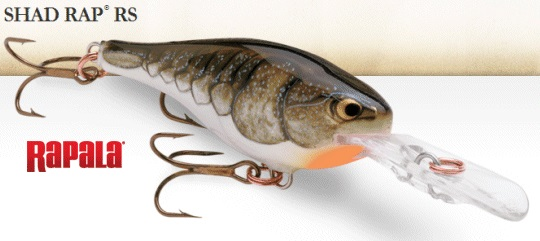 Rapala Shad Rap rs