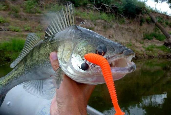 Рыбалка приманки для судака видео